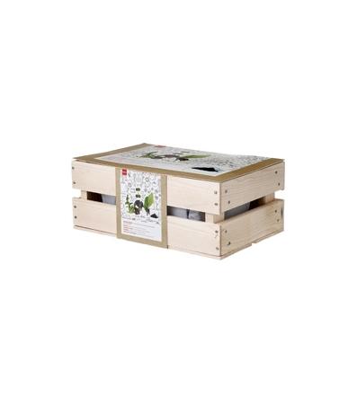 coffret-de-jardinage-salade-41877049-product_rd-481036722