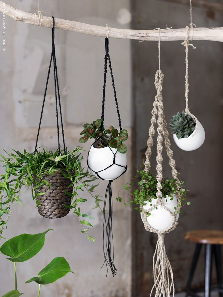 plant hangers suspension en macram pour plantes rise and shine. Black Bedroom Furniture Sets. Home Design Ideas